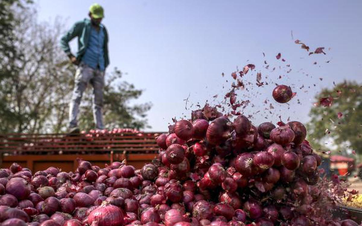 Onion export ban to be lifted on Mar 15 - The Hindu BusinessLine