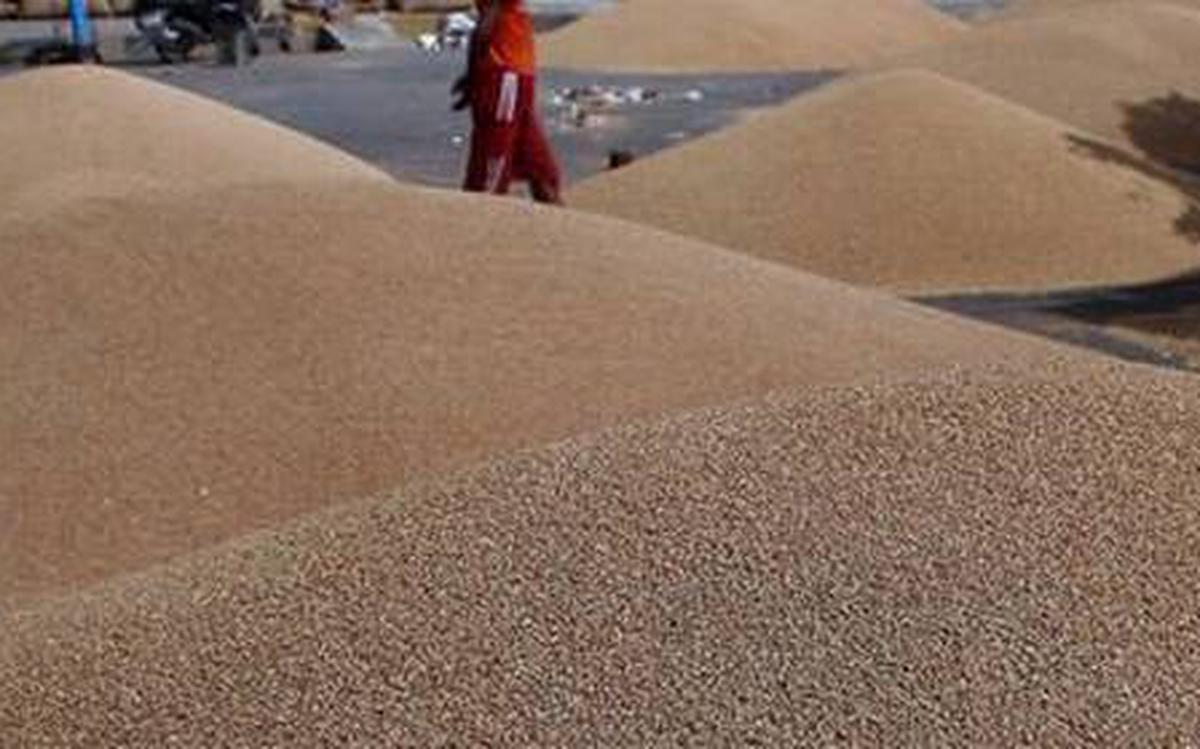 Southern flour mills worried over wheat import duty hike