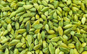 Delayed summer shower forecast worries cardamom growers
