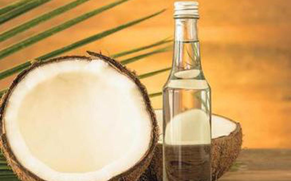 FY19 coconut product exports set to cross ₹2,000 cr - The
