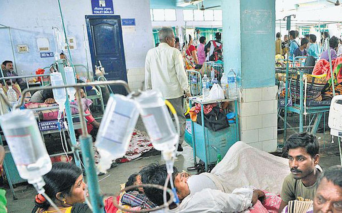 Dengue fears push up mosquito-repellent sales in Bengal