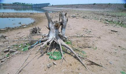 35fb19df3 CM Chandrababu Naidu wants to drought-proof his State with river-linking  and conservation projects. Will the schemes hold water