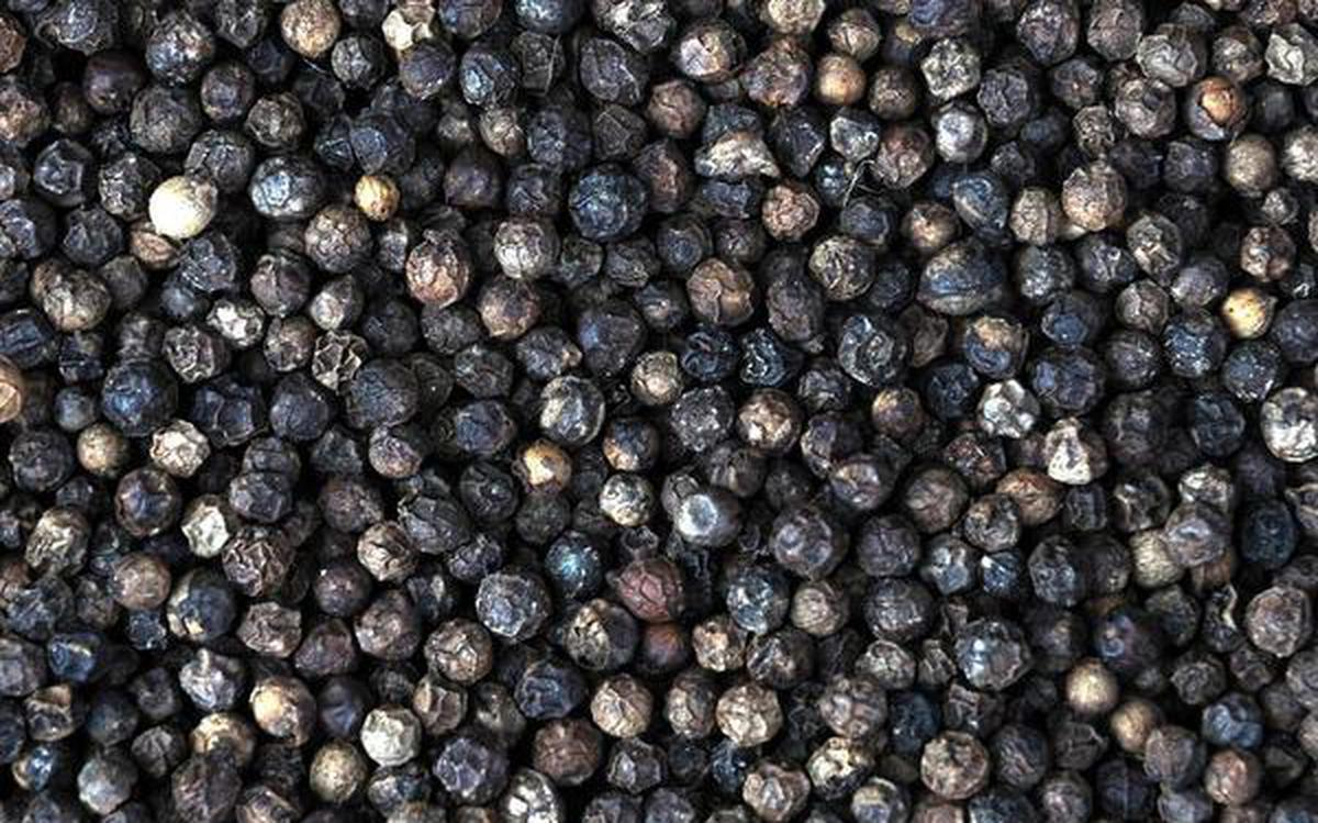 40,000-t pepper imports hammered prices in 2017 - The Hindu