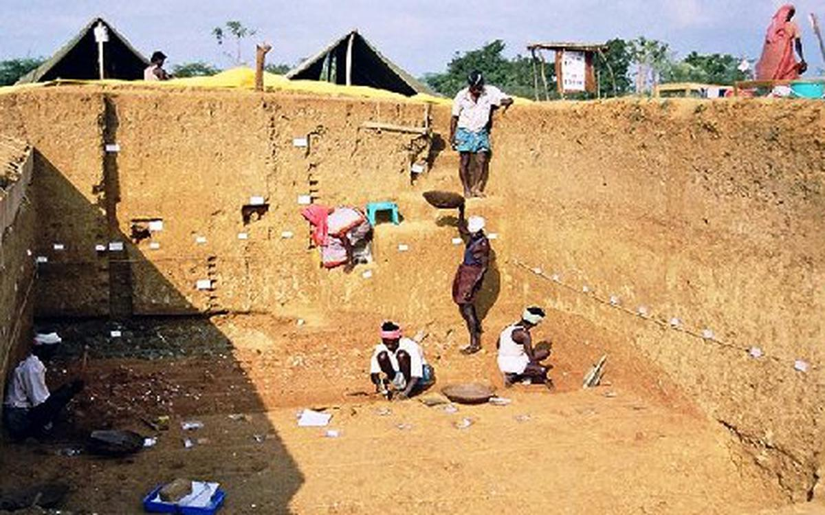 Stone Age tools found in TN suggest reframing of 'Out of Africa