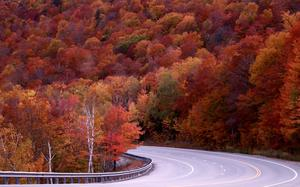 As autumn bursts into a riot of colours in farther North, tropics turn the 'fall guy'