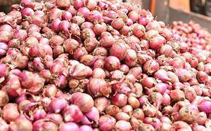 Onion retail trader stock limits cut to 2 tonnes